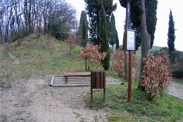 Parco collinare e giardino di Canonica 10