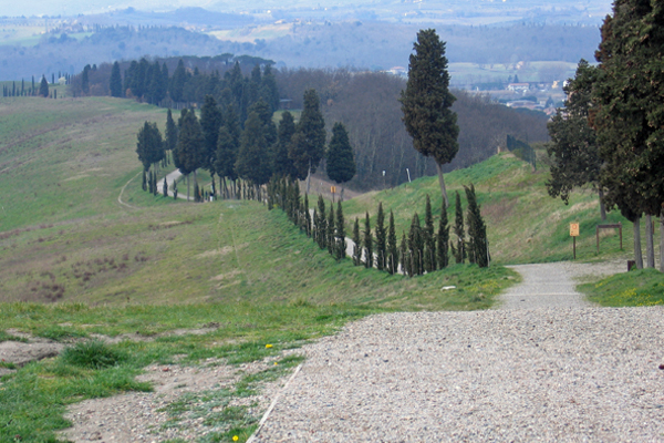 Parco collinare e giardino di Canonica 3