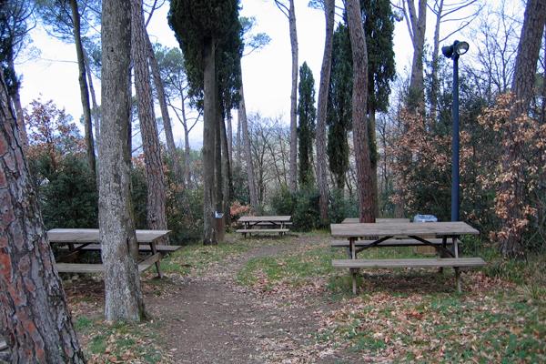 Parco collinare e giardino di Canonica 6