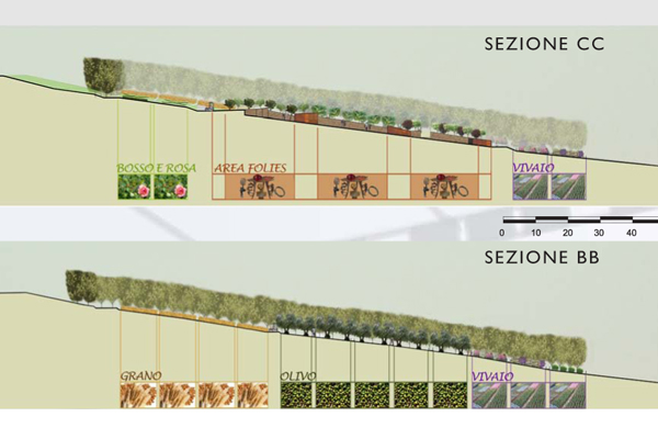 parco archeologico Verucchio 5